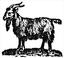 Photo: Kozioł (ryc. XIX w.)