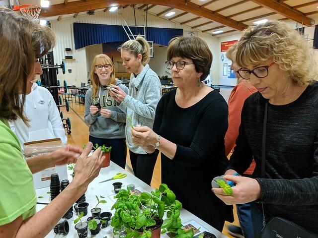 school hydroponics and teacher training. the benefits of hydroponics