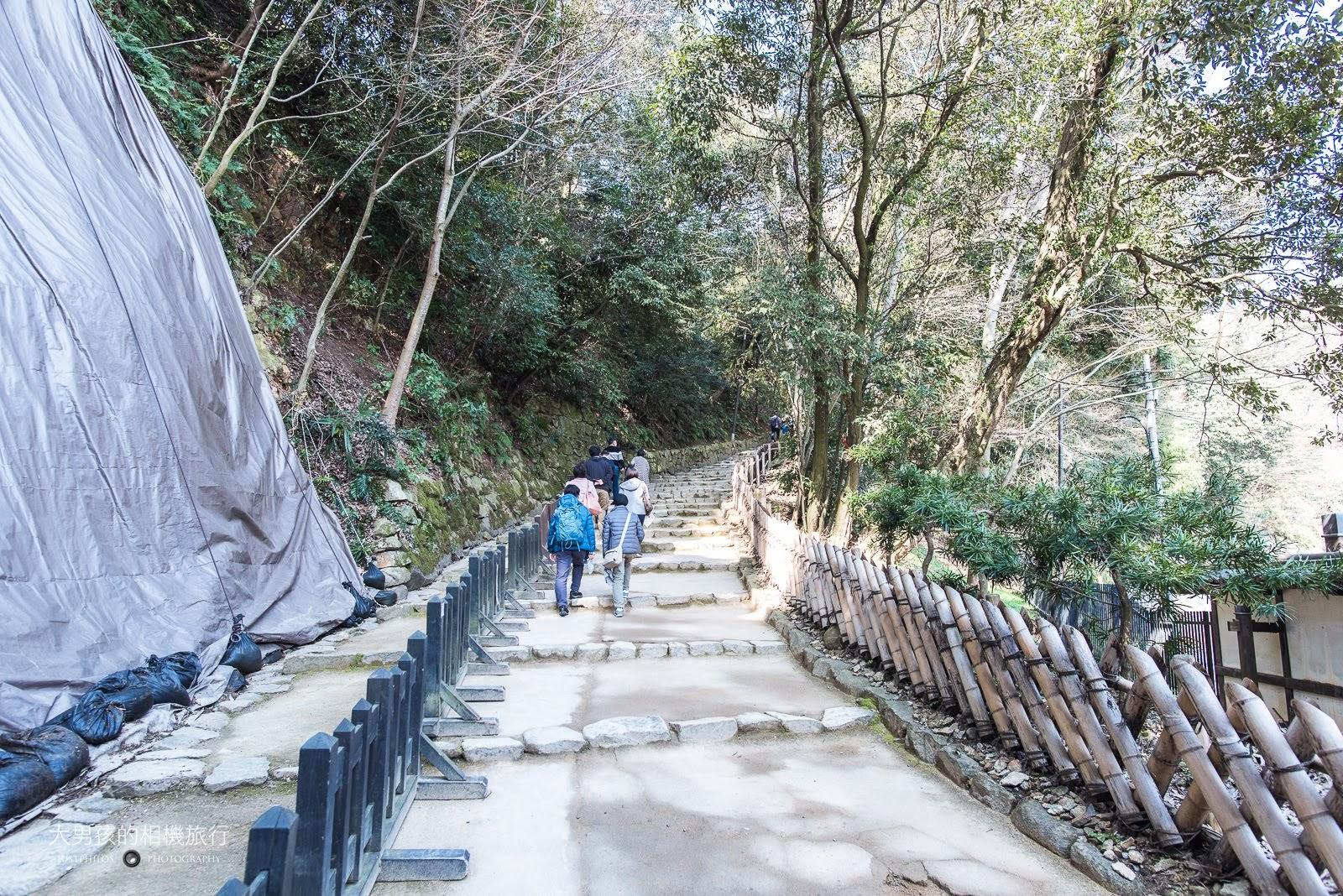 一進入彥根城就要開始爬一段上坡的階梯,坡勢平緩還算滿好走的。