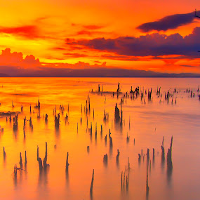 Gensan Waterscape by Rafael Uy - Landscapes Sunsets & Sunrises ( gensan, tree, sunset, waterscapes, general santos, philippines,  )