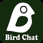 Bird Chat Icon