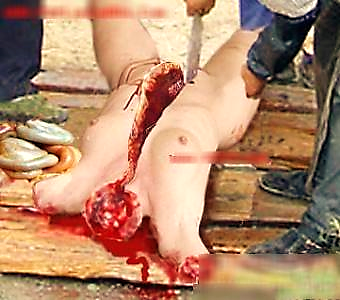 http://ditmehochiminh.files.wordpress.com/2009/04/cannibalism10.jpg