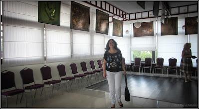 Photo: Str. Basarabiei, Nr.44 - Salis Hotel & Medical Spa  Expozitie de arta plastica Multivers: Universuri Paralele. Au expus: Dana Deac si Cecilia Rusu - 2017.08.17 - (Erica Szanto)