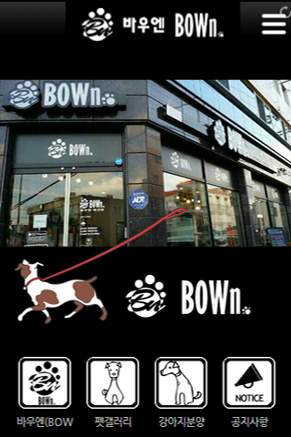 바우엔 BOWn 애견샵