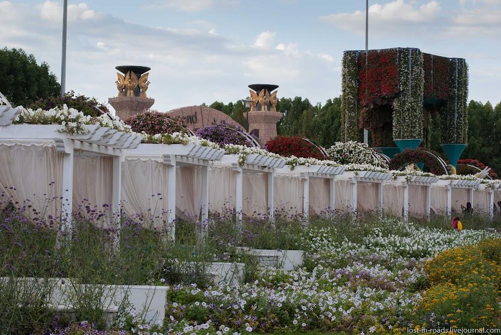 парк цветов и бабочек в Дубай