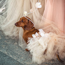 Wedding photographer Daniela Tanzi (tanzi). Photo of 10.09.2018