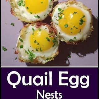Quail Egg Nests.