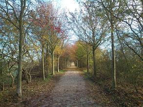 Photo: Around Airwin, Dortmund, 26.11.13