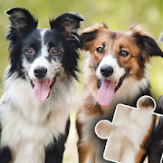 Cats & Dogs Jigsaw Puzzles for kids & toddlers \ud83d\udc3e