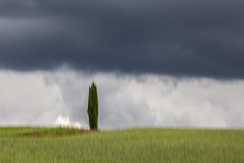 Siena....la mossa di stefanogaleotti