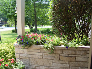 Photo: front porch flowers