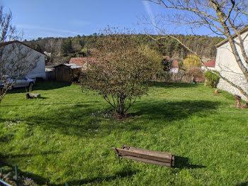 terrain à Ormoy-la-Rivière (91)