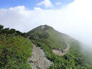 白岳山頂へ(直進)