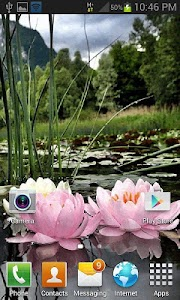 Nature Lotus Flower LWP screenshot 1