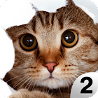 Find a Cat 2 - Hidden Object icon