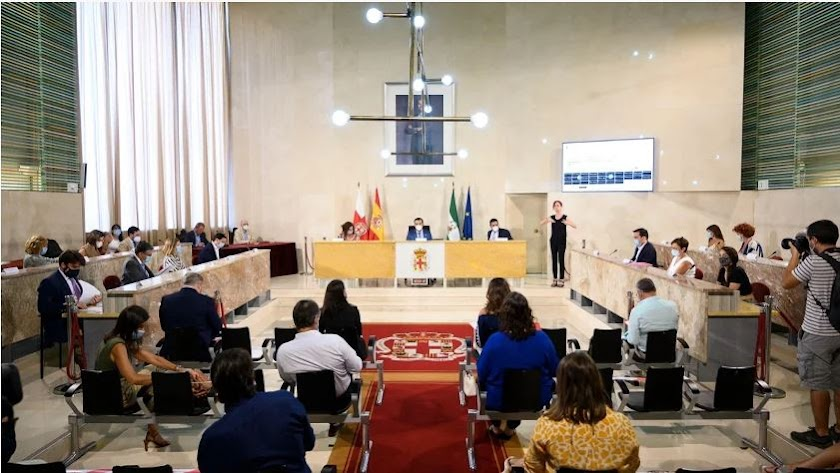 Sesión plenaria en el Ayuntamiento de Almería