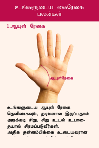 Kairegai Palangal - Android Apps on Google Play