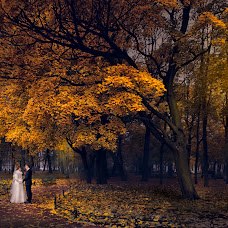 Wedding photographer Tatyana Cherepanova (TCherepanova). Photo of 26.10.2014