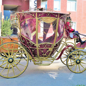 An old coach at street by Svetlana Saenkova - Transportation Other ( burgundy colour, brougham, golden, old style, coach,  )