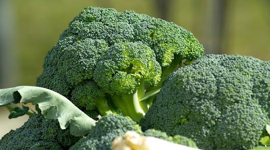 Brócoli salteado con ajo al mediodía y caballa al horno de cena: come sano