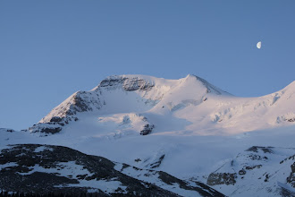 Photo: The early morning sun lights up Mt. Athabasca.