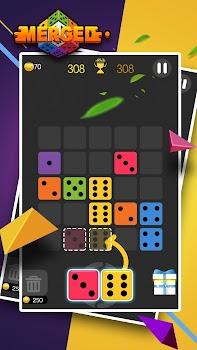 Dominoes Puzzle