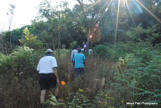 Photo: Entering into Jungle..... This jungle is till the top....Providing shadow till end...which makes trek little easy...