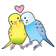 Happy Bird Store for PC-Windows 7,8,10 and Mac
