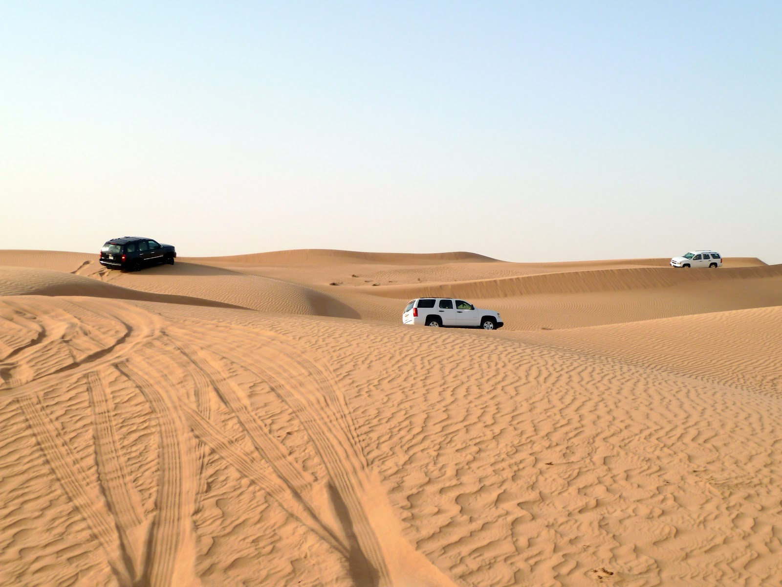 Image result for dubai desert