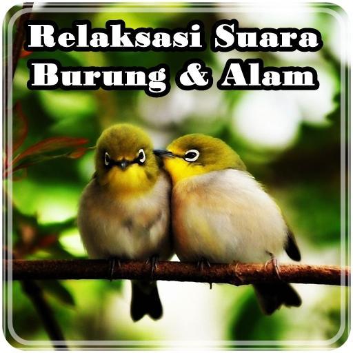 Relaksasi Suara Burung & Alam