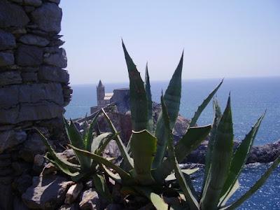 Campanile e mediterraneo di sarettalapo