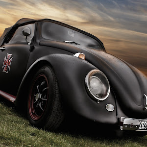 Matt Black Beetle.jpg