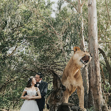 Wedding photographer Lei Liu (liulei). Photo of 31.07.2018