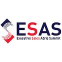 ESAS2019 icon