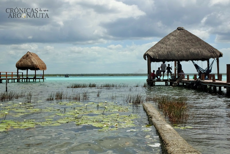 Green Monkey Hostel en Bacalar