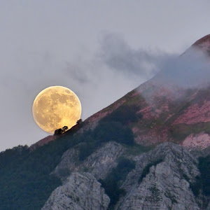 Luna Corchia++.jpg