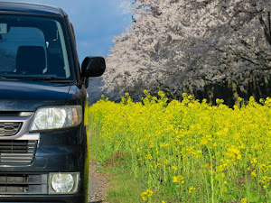 ゼスト JE2 スポーツ・4WD・TURBOのカスタム事例画像 JOKERさんの2020年04月30日06:54の投稿