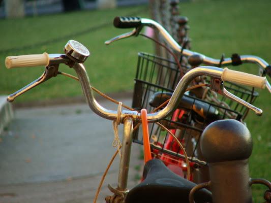 Vecchie biciclette di aidoru