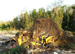 Photo: dead bulldozer after a preliminary area was cleared several years ago  for a road at the edge of the very rocky Ironwood Forest. June 25, 2008 NW edge track, S of Coemer Drive can be seen on Google map https://maps.google.com/maps?q=grand+cayman&hl=en&ll=19.280978,-81.381569&spn=0.006613,0.009602&hnear=Grand+Cayman&t=h&vpsrc=6&z=17