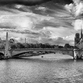 Paris by Lynn Bolt - Black & White Landscapes ( paris, river seine, france, cityscape, city,  )