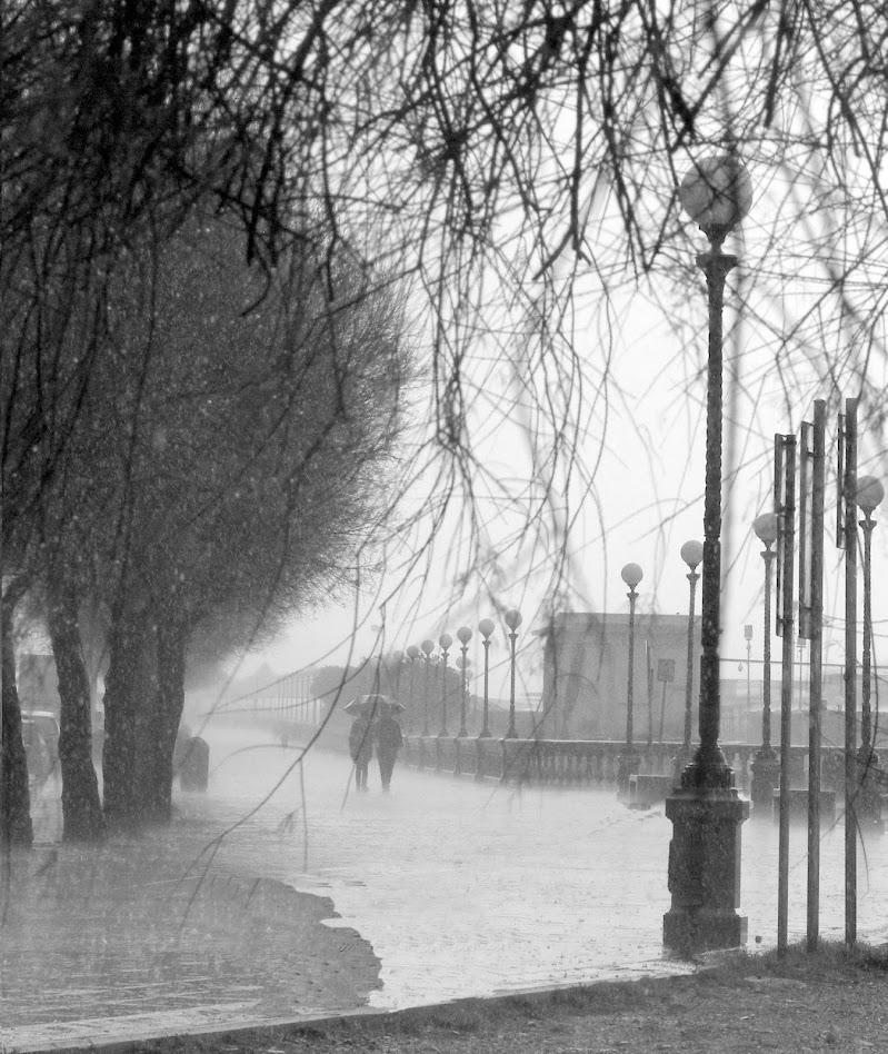 Acquazzone alla Terrazza Mascagni di Livorno di PaoloRd
