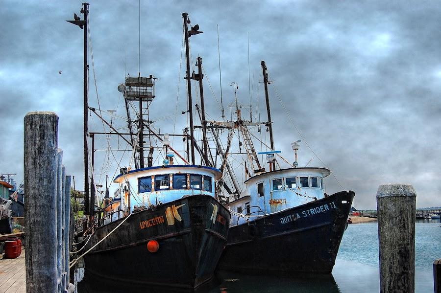 Shipyard In Menemsha by Karen Tawater - Transportation Boats