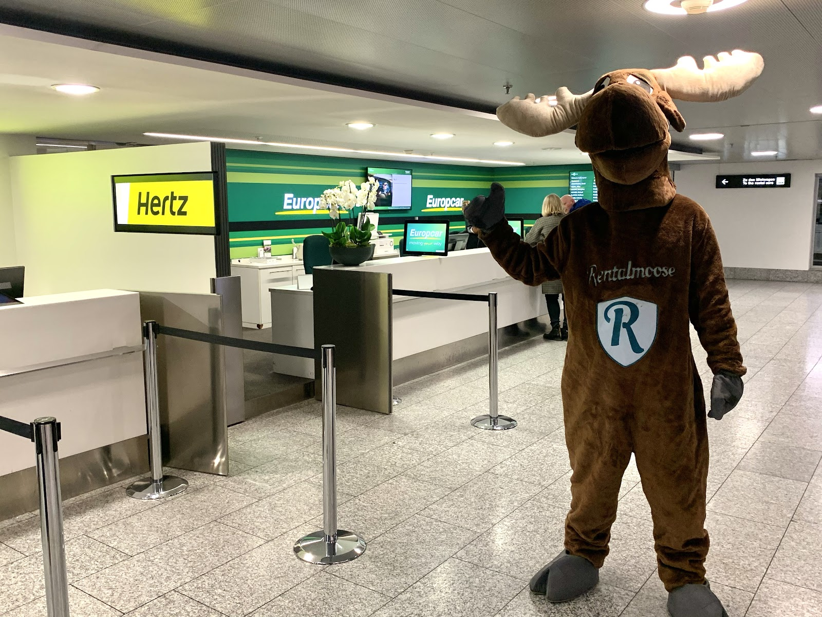 Rentalmoose mascot posing, right thumbs up, in front of Europcar and Hertz car rental counters. Rental Moose is a global car rental broker which will help you get the best deal on your next rental car.
