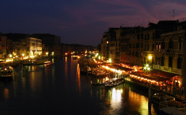Venice di Dharma11