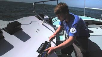Shark Week 2014 Sneak Peek