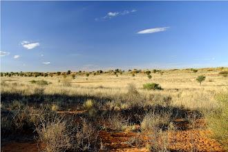 Photo: La vastità dal Kalahari