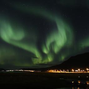 by Sigbjørn Berg - Landscapes Starscapes ( winter, aurora borealis, northern lights, reflections, vesterålen, nordland, northern norway )