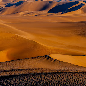 Lines in the Dunes by Johan Jooste Snr - Landscapes Deserts ( sand, namib desert, dunes, desert, lines, johan jooste, light and shadow, namibia )