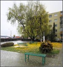 Photo: Cam asa e vremea pe la noi....... - imagine din Parcul din MR3 - 2017.12.02
