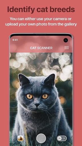 Cat Scanner – Cat Breed Identification ss1